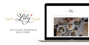 Lily – Blog for Bloggers, Reviewers WordPress Theme