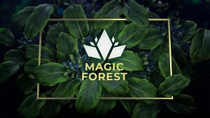 Magic Forest Logo Reveal After Effects Project