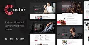 Castor – Business Consulting WordPress Theme