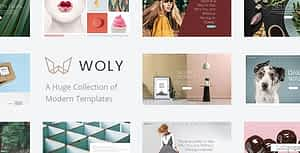 Woly – Multipurpose WordPress Theme