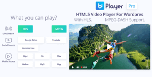bzplayer Pro – Live Streaming Player WordPress Plugin