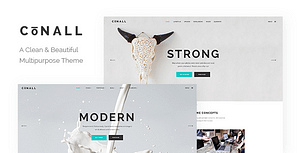Conall – Clean Multipurpose Theme