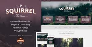 Squirrel – A Responsive WordPress Blog Theme
