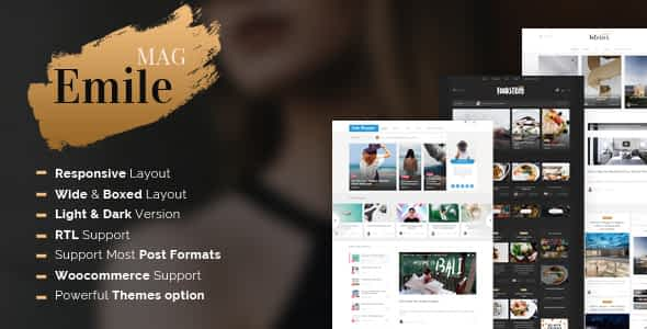 Emile - Responsive WordPress Blog Theme With Shop Nulled