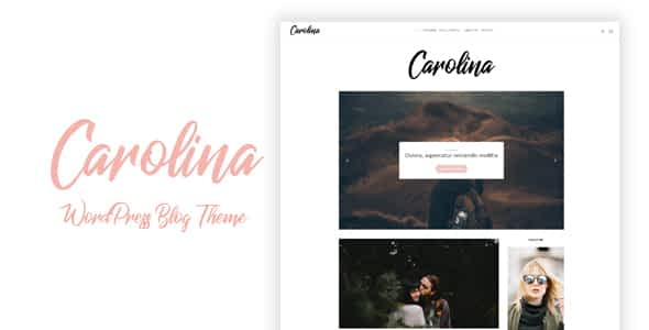 Carolina - Simple WordPress Blog Theme Nulled