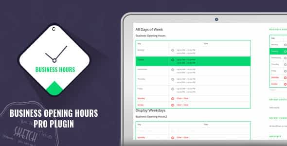 Business Opening Hours Pro Plugin