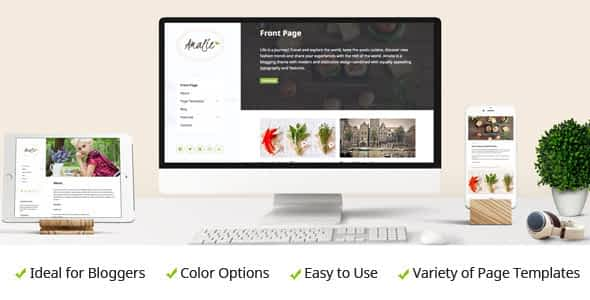 Amalie - Modern Blogging WordPress Theme Nulled