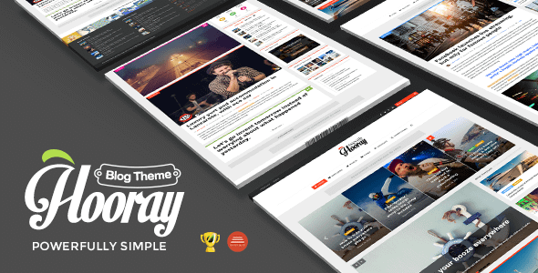 Hooray — Blog WordPress theme for Professional Writers Nulled