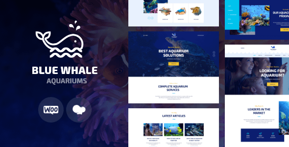 Aqualots   Aquarium Installation and Maintanance Services Wo... Nulled