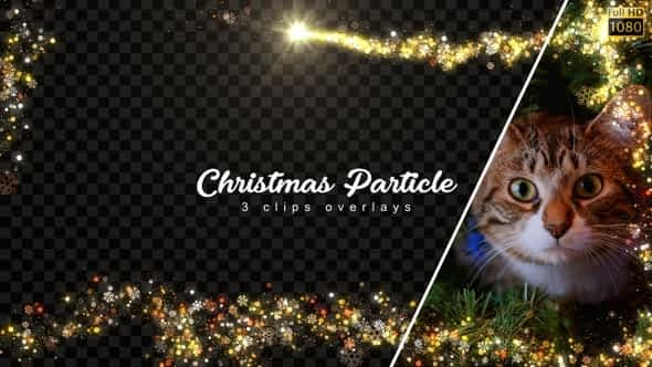 Christmas Frames Free Download